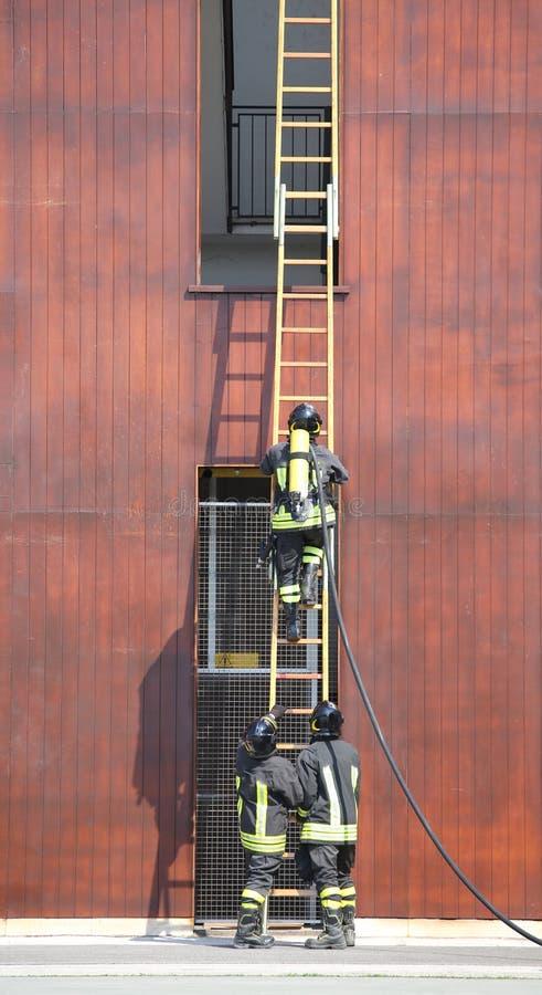 Três sapadores-bombeiros no corpo dos bombeiros com uma escadaria longa fotografia de stock royalty free