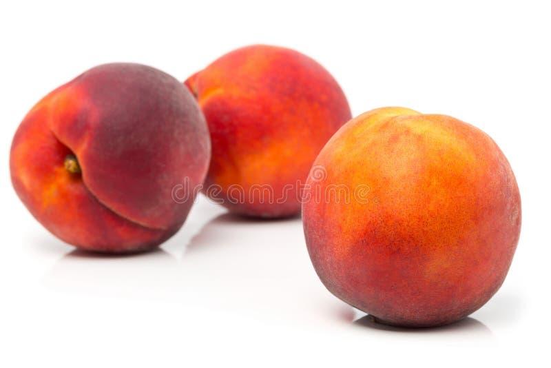Três sem cortes, fruto inteiro, maduro dos pêssegos imagens de stock royalty free