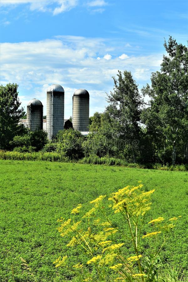 Três silos situados em Franklin County, New York, Estados Unidos, EUA fotos de stock royalty free