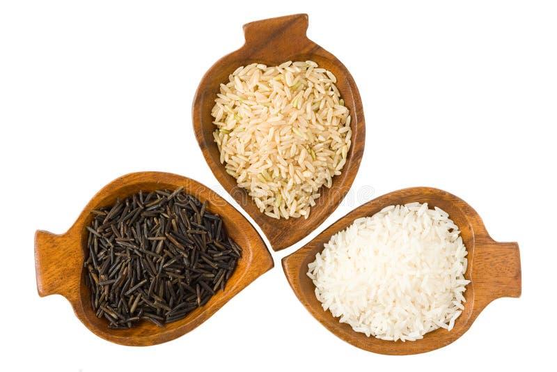 Três tipos do arroz imagens de stock royalty free