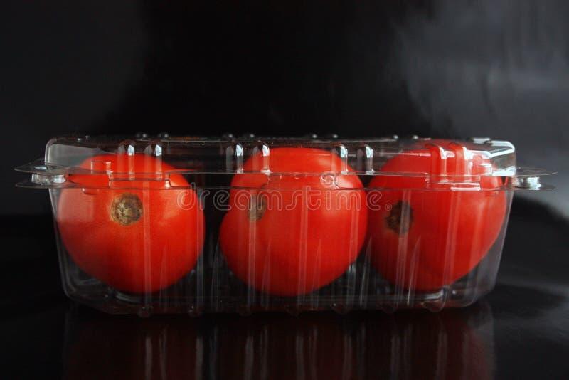 Três tomates imagens de stock