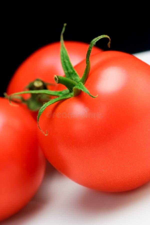 Três tomates em uma placa fotos de stock royalty free