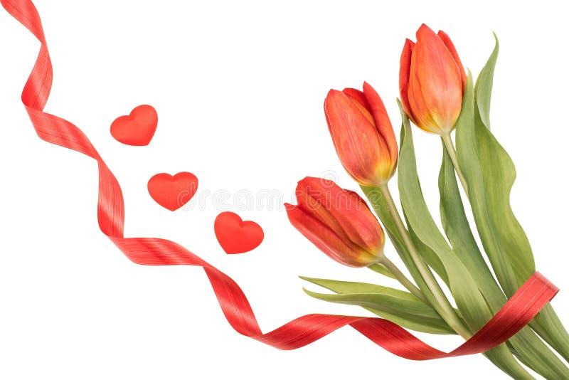 Três tulipas vermelhas, fita espiral e corações pequenos, com espaço para fotos de stock royalty free