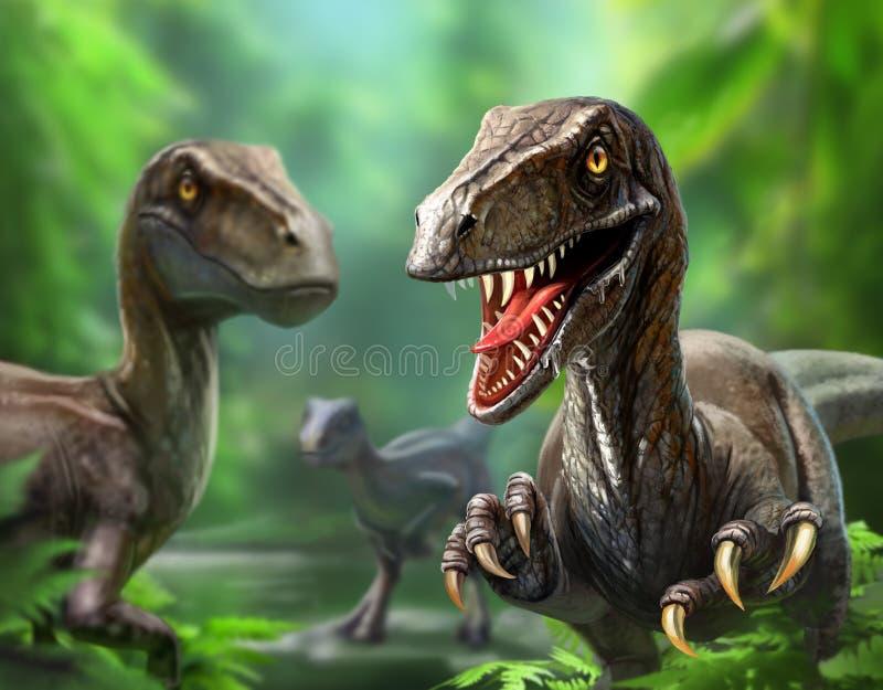 Três velociraptors dos dinossauros na natureza foto de stock royalty free