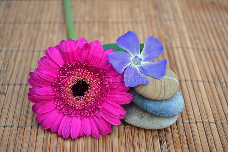 Três zenstones com a flor no fundo de lingüeta de bambu fotos de stock