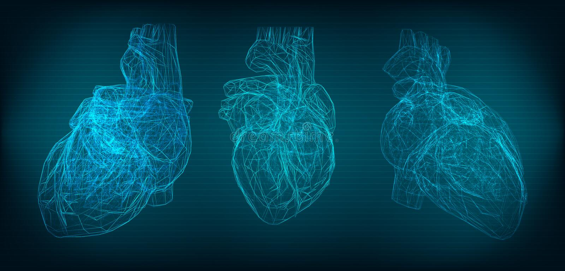 Trójwymiarowy ludzki serce na zmroku - błękitny tło royalty ilustracja