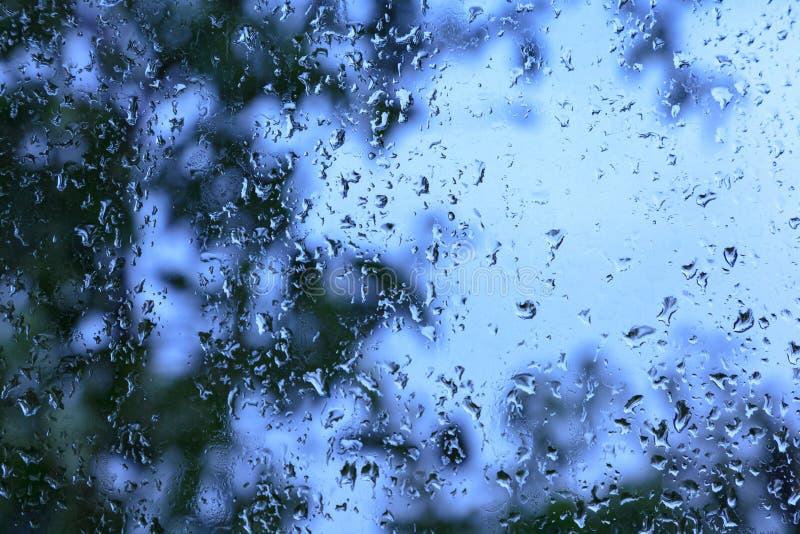 Tröpfchen des Regens auf einem Fenster stockfotografie