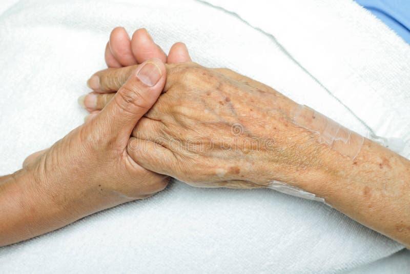 trösta hand royaltyfri foto