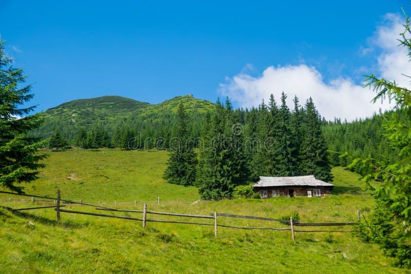 Tr?kabin i bergen royaltyfri bild