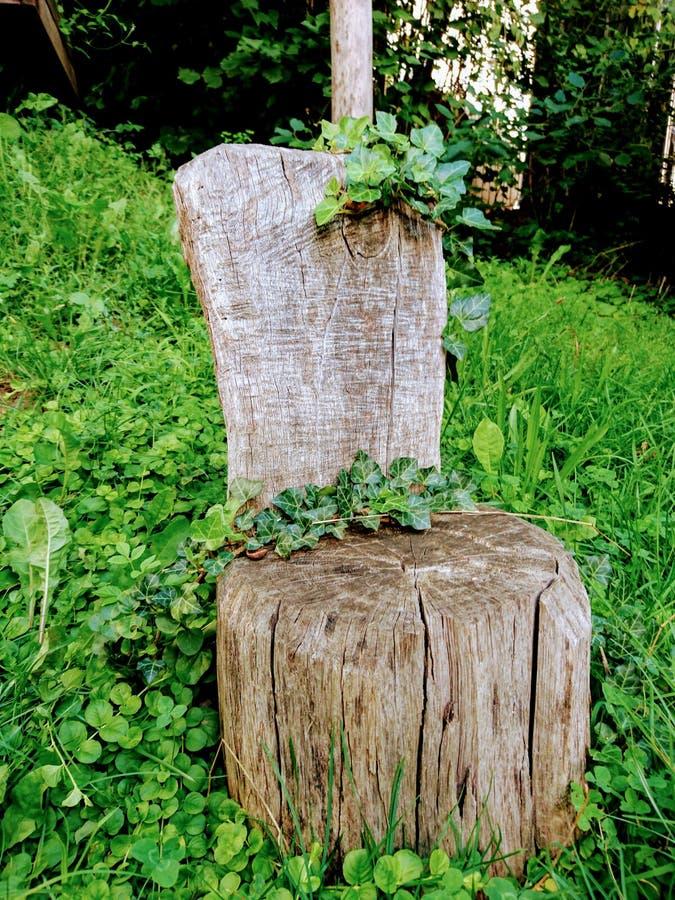 Trône en bois photographie stock