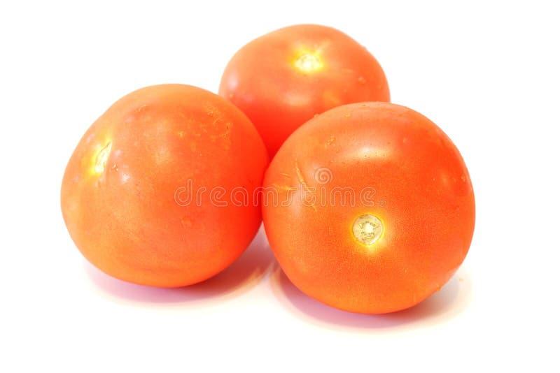 Tr?s tomates vermelhos frescos fotos de stock royalty free