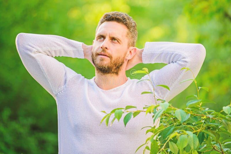 Tr?umen des Mannes im Walddaydreamer ?kologisches Leben f?r Mann Mann am gr?nen Waldmorgen in der Natur Gesunder Lebensstil stockbild