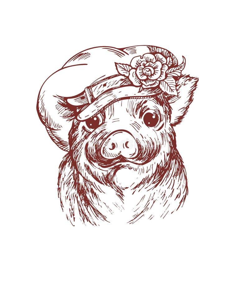 Tração da mão um retrato de um porco pequeno em um tampão com uma rosa Ilustração do esboço do vetor Símbolo de um ano novo chinê ilustração royalty free