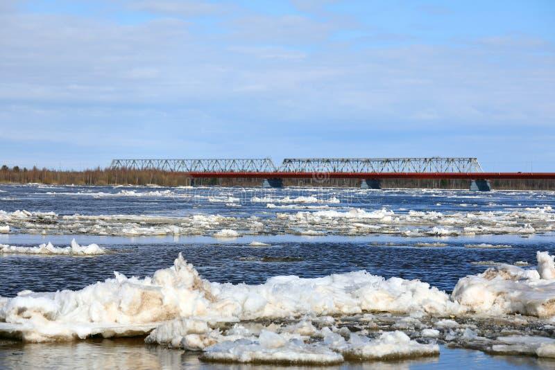 Tração do gelo da mola no rio de Nadym no norte de Sibéria ocidental imagem de stock royalty free