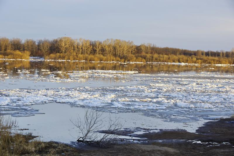 Tração do gelo no rio Por do sol Banquisas de gelo que flutuam na água foto de stock royalty free