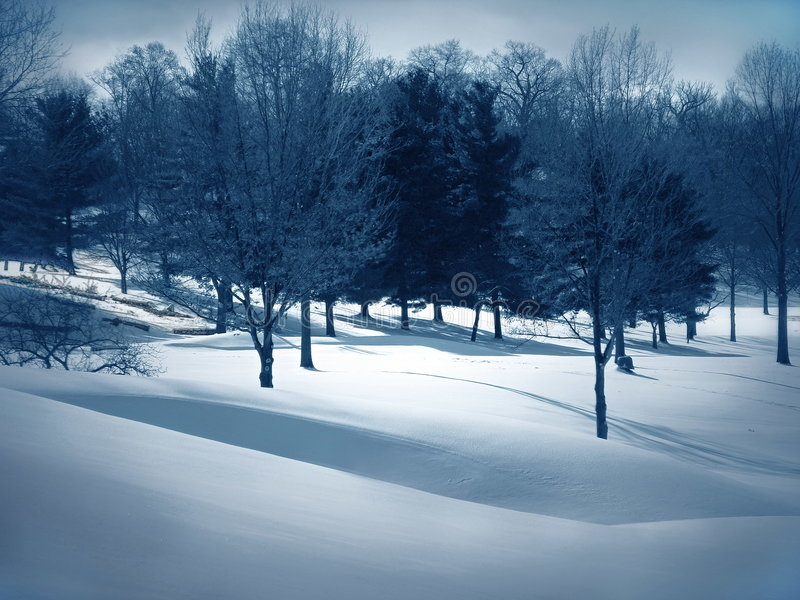 Trações da neve imagem de stock