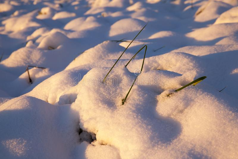 Trações da neve fotos de stock royalty free