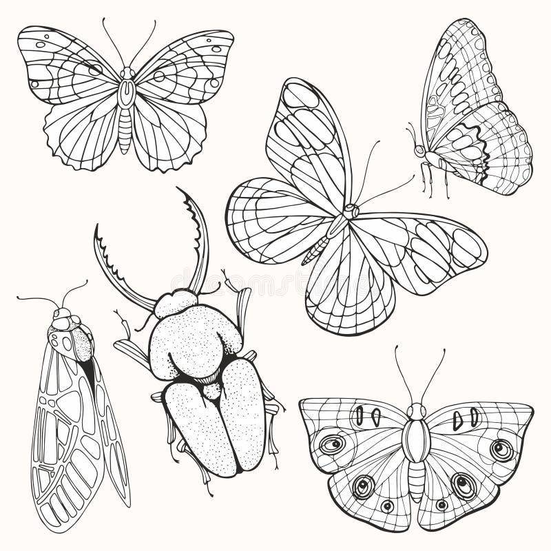 Traças, borboletas e besouros Desenhos animados ilustração stock