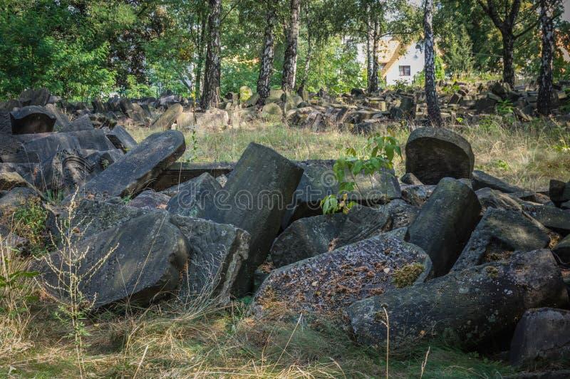 Traços de cemitério judaico de Varsóvia - de Brodno fotografia de stock royalty free