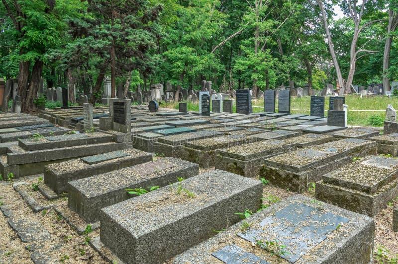 Traços de cemitério judaico de Varsóvia - de Okopowa imagem de stock