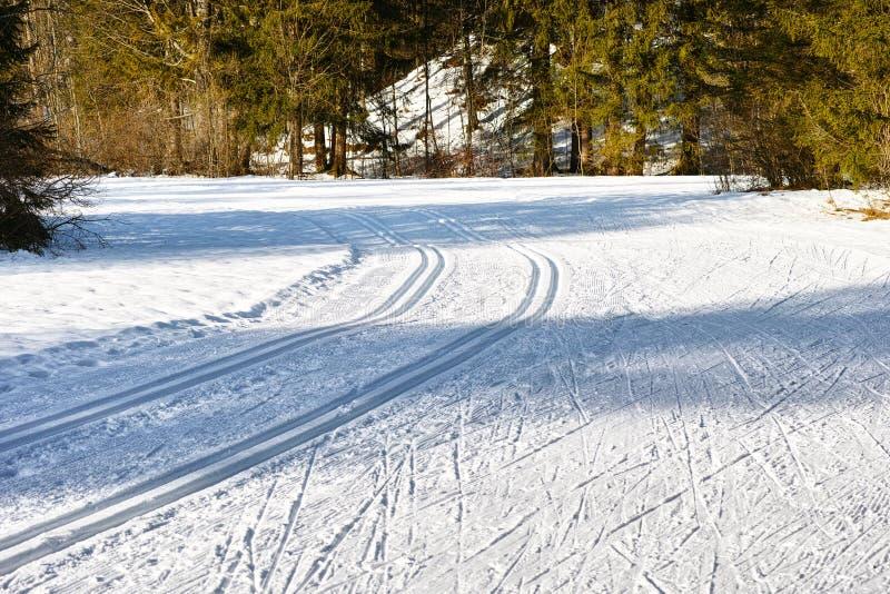 Traços do campo de neve imagem de stock