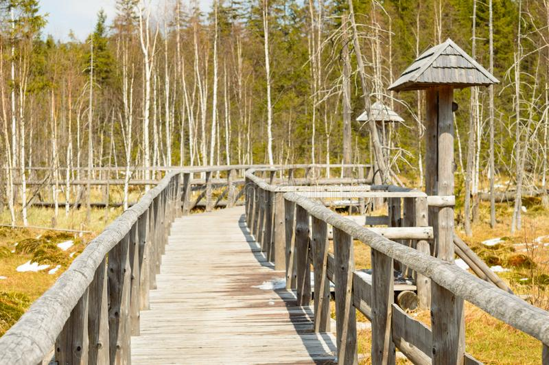 Traînée éducative sur le marais de tourbe, pilier en bois images libres de droits