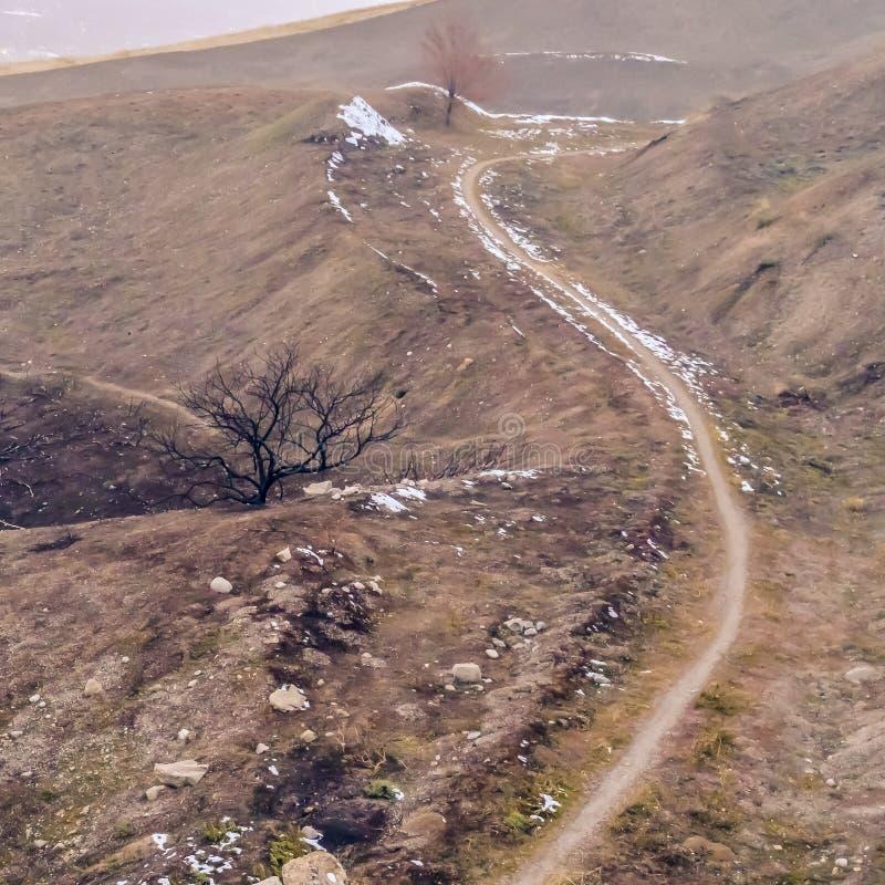 Traînée étroite carrée sur une colline brune avec le ciel flou à l'arrière-plan photographie stock libre de droits