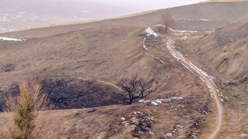 Traînée étroite de cadre de panorama sur une colline brune avec le ciel flou à l'arrière-plan images libres de droits