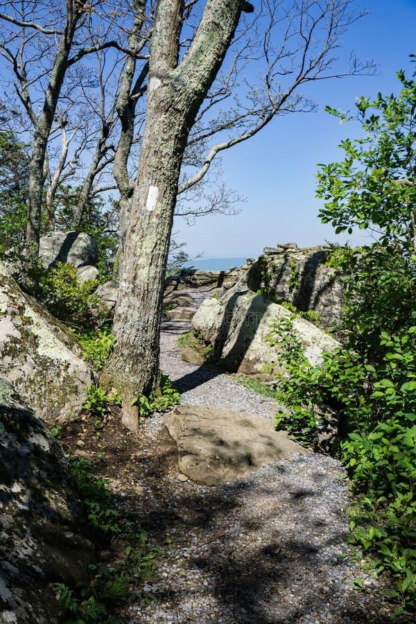 Traînée appalachienne au tonnerre Ridge Overlook photographie stock libre de droits