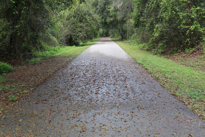 Traînée Autumn Early Morning de vélo image stock