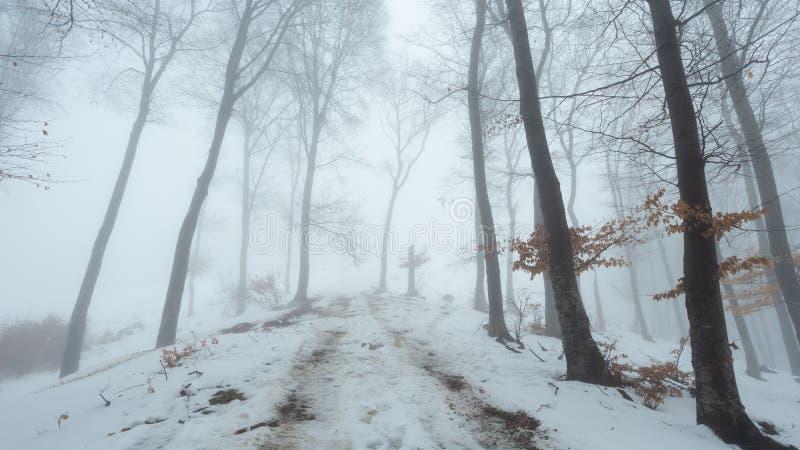 Traînée couverte dans la neige dans les arbres forestiers brumeux romantiques de feuilles rouges Jour de froid d'hiver images stock