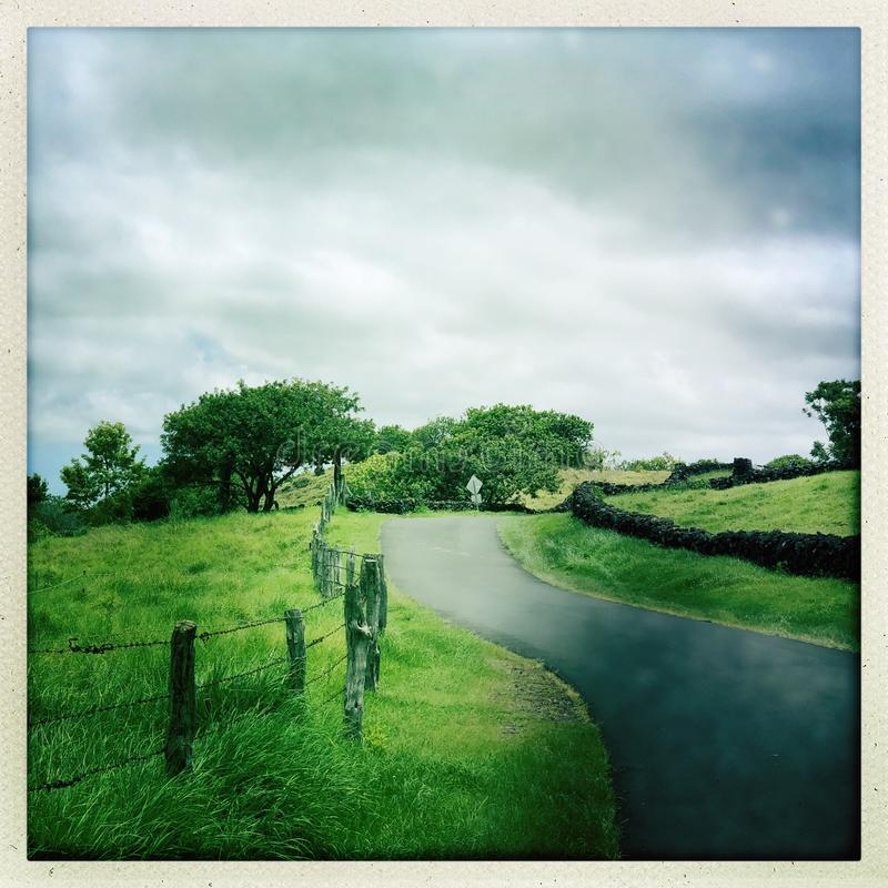 Traînée dans Kula sur Maui en Hawaï images libres de droits