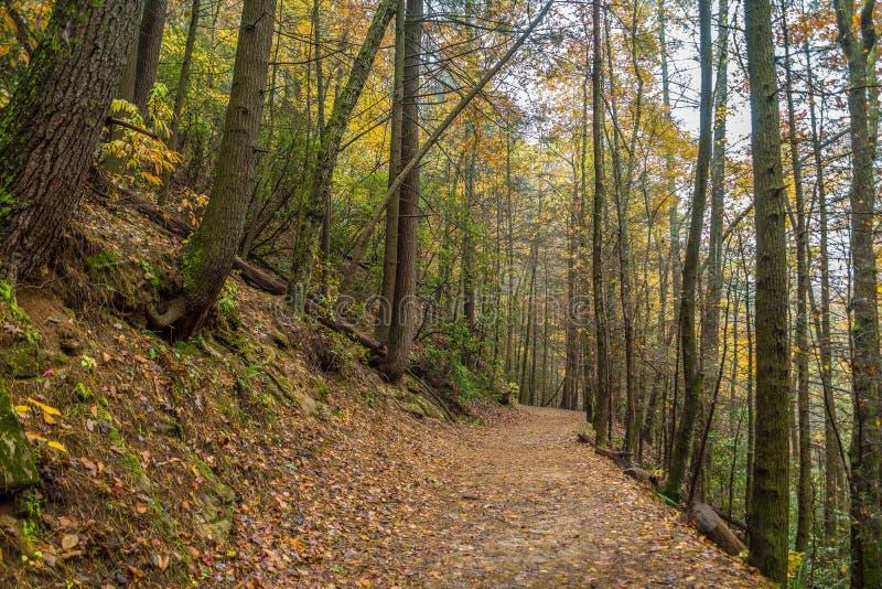 Traînée dans les montagnes en automne photographie stock libre de droits