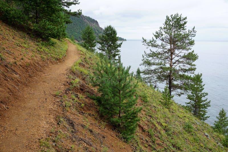 Traînée de Baikal de grille, Sibérie, Russie photos stock