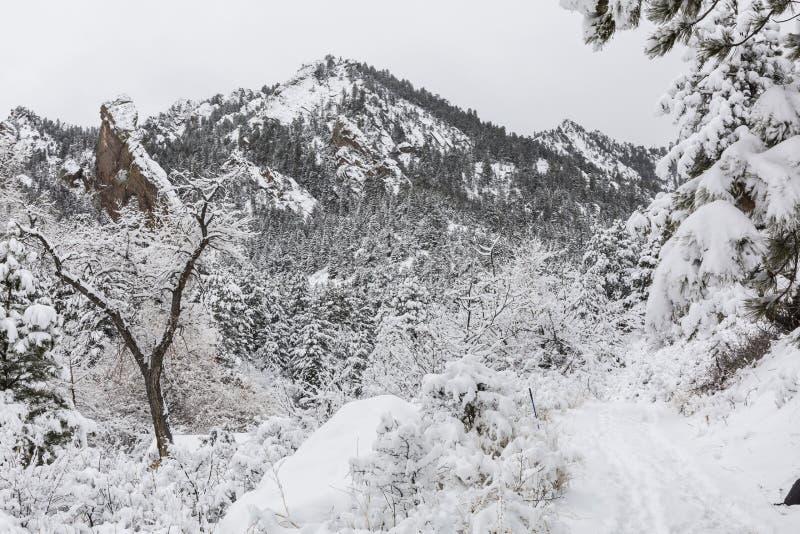 Traînée de canyon d'ombre dans la neige photographie stock