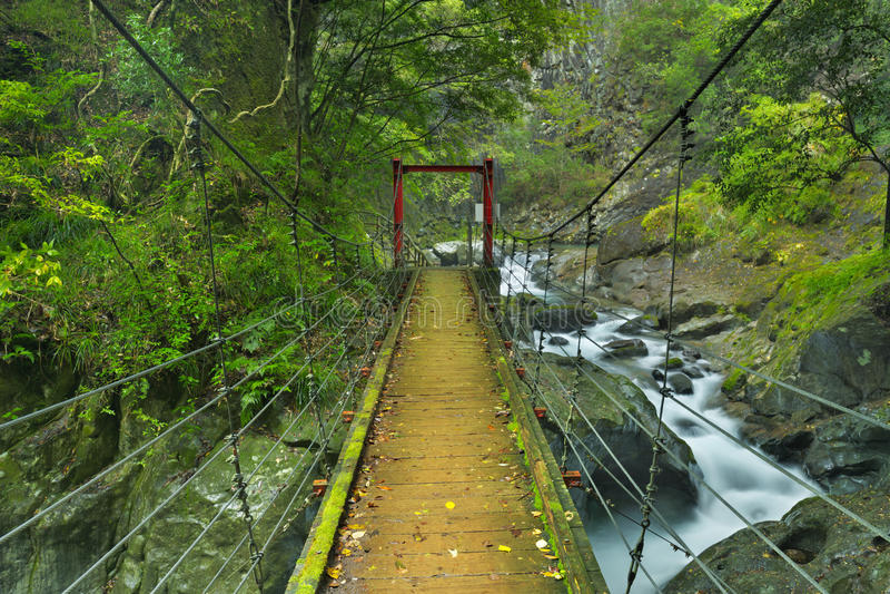 Traînée de cascade de Kawazu, Izu Peninsula, Japon photo stock