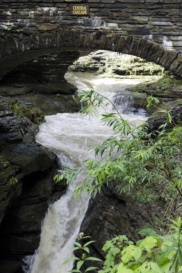 Traînée de gorge chez le Watkins Glen State Park images libres de droits
