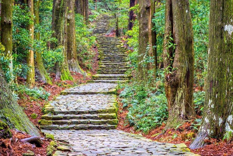 Traînée de Kumano Kodo photos libres de droits