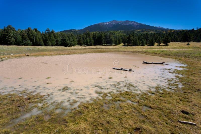 Traînée de lac bismarck en Arizona du nord photo libre de droits