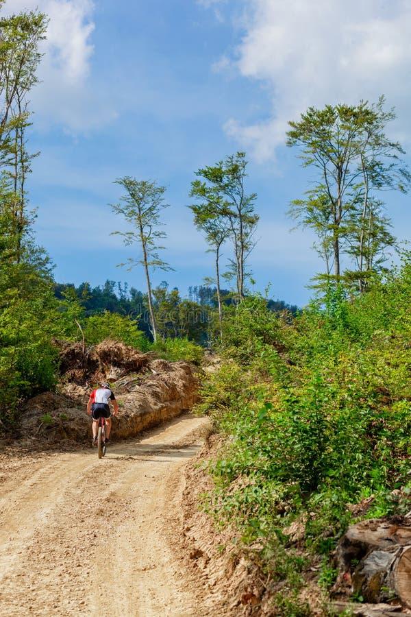 Traînée de montagne un jour ensoleillé, un ciel bleu et un vélo de montagne d'équitation d'homme dans la distance images stock