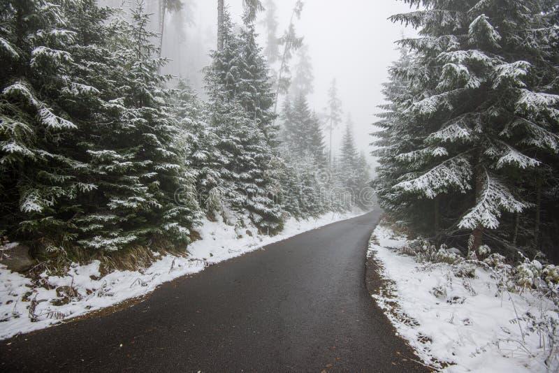 traînée de touristes de hausse humide humide avec des restes de neige des côtés photographie stock