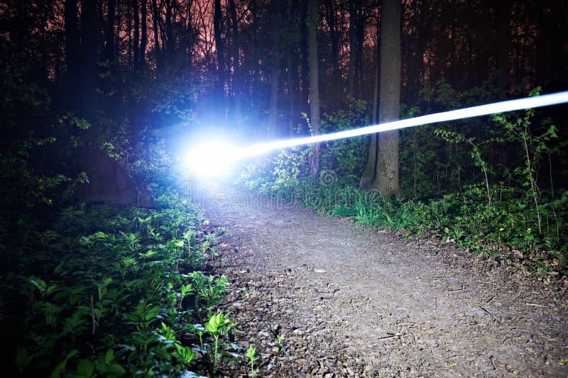 Traînée légère brouillée d'un vélo d'équitation la nuit dans la forêt photos libres de droits