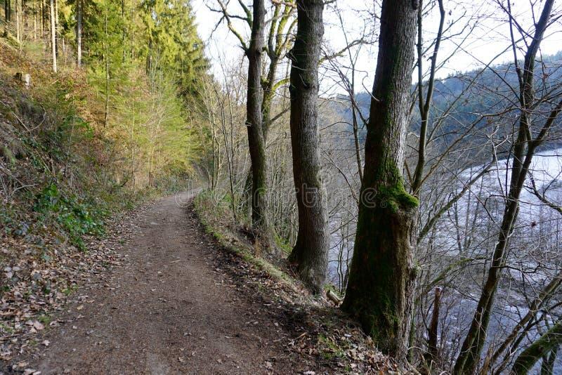 Traînée le long de la rivière la Ruhr près de Monschau photographie stock