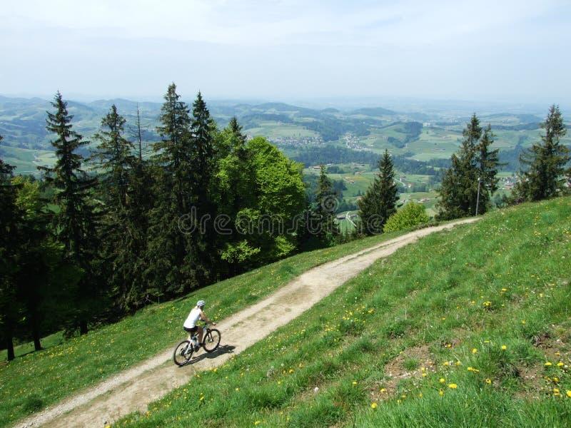 Traînées alpines merveilleuses de faire du vélo de montagne en Suisse photo libre de droits