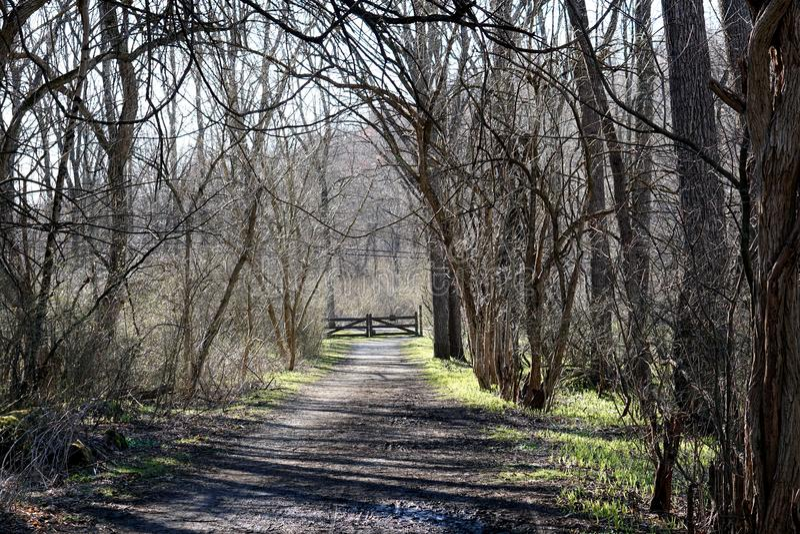 Traînées dans Clay Creek blanc en Pennsylvanie image libre de droits