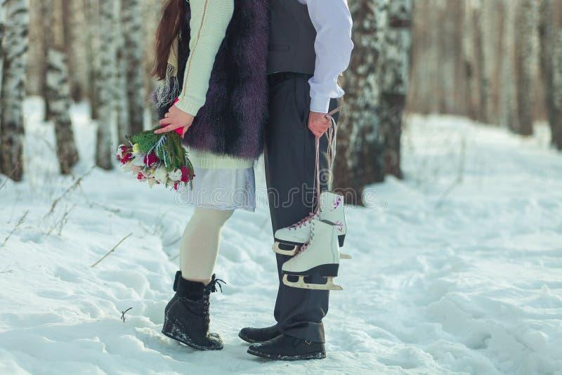 Traîneau, blanc, neige, sports, chevaux, deux, amusement de lov, dehors, froid, montagne, fond, nature, bois, fleurs, fleur, amus images libres de droits