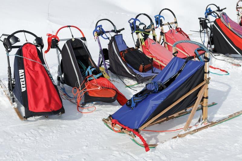 Traîneau de chien de sports ou traîneau de chien pour des disciplines de sports de neige - courses de chien de traîneau images libres de droits