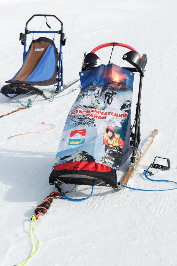 Traîneau de chien de sports ou traîneau de chien pour des disciplines de sports de neige - poursuivez les courses de traîneau photographie stock libre de droits