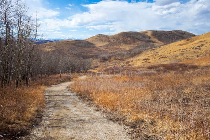 Traînez cependant le parc provincial de beau ranch de Glenbow dans Alberta image libre de droits