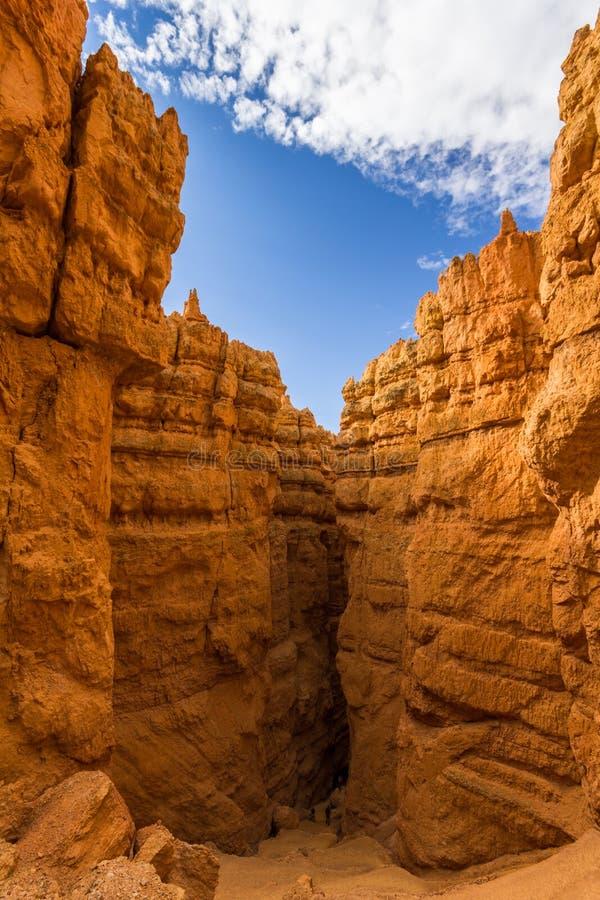 Traînez dans Bryce Canyon pendant le matin images stock